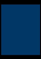Blue apple icon